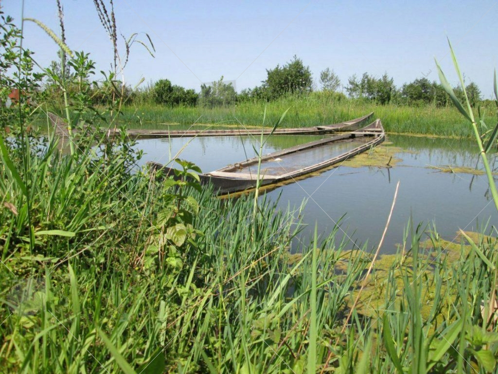 پارک ملی بوجاق (تالاب بوجاق) یکی از مناطق حفاظت شده در بندر کیاشهر استان گیلان است. این منطقه تنها پارک خشکی - دریایی است. این پارک دارای مساحت ۳۲۶۰ هکتار است. در این منطقه پرنده ها و جانوران زیادی زندگی می کنند.