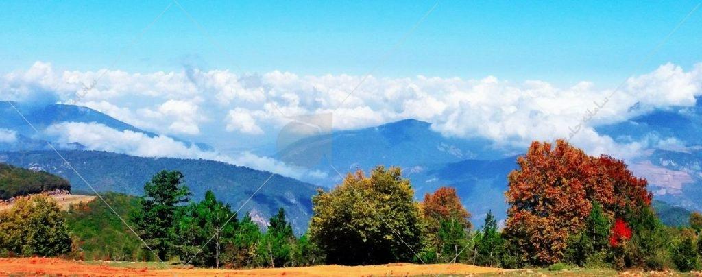 جنگل ابر شاهرود قسمتی از قدیمیترین و زیباترین جنگلهای هیرکانی است