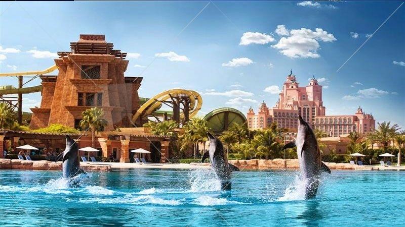 دلفیناریوم دبی جاییست که علاوه بر اینکه میتوانید بازی و شیرین کاریهای دلفینها را تماشا کنید بلکه به شما اجازه داده میشود که نزدیک آنها شوید و برای دقایقی در آب شنا کنید و تفریح و هیجانی متفاوت را تجربه کنید