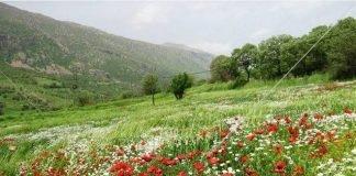 طبیعت کردستان